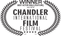 best-actor-male-chandler